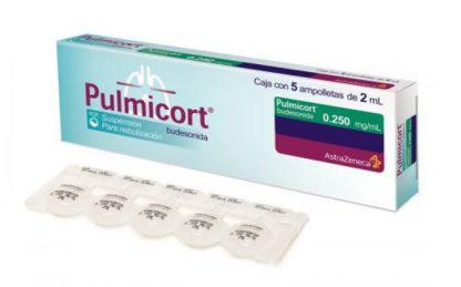 PULMICORT 0.250MG .500MG C/5